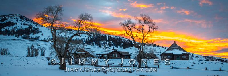 Buffalo Ranch at Sunrise ~ Lamar Valley